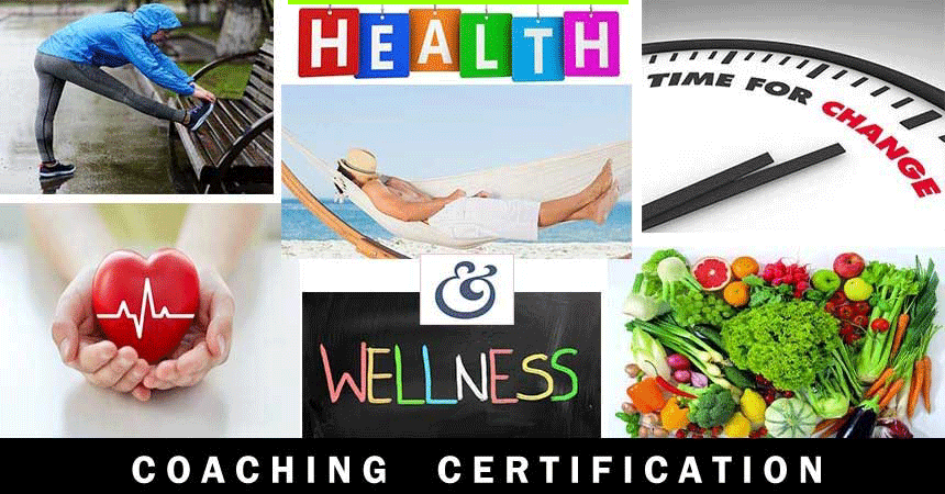 Health Wellness Certification